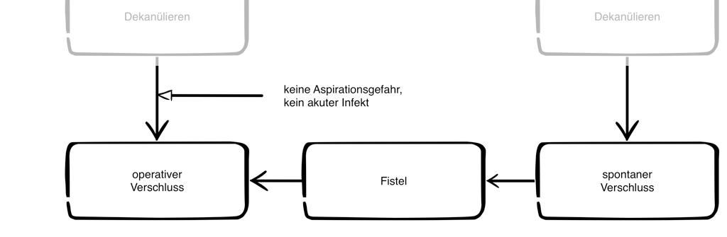 dekanuelierungsschema_verschluss